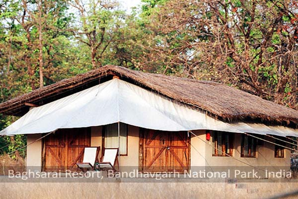 Large Photograph of BAGH SARAI RESORT ( HOME STAY) located in Bandhavgarh