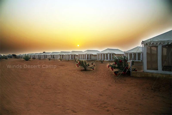 Large Photograph of WINDS DESERT CAMP JAISALMER located in Jaisalmer