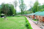 MORPHEUS VALLEY RESORTS KULLU Kullu thumbnail photographs