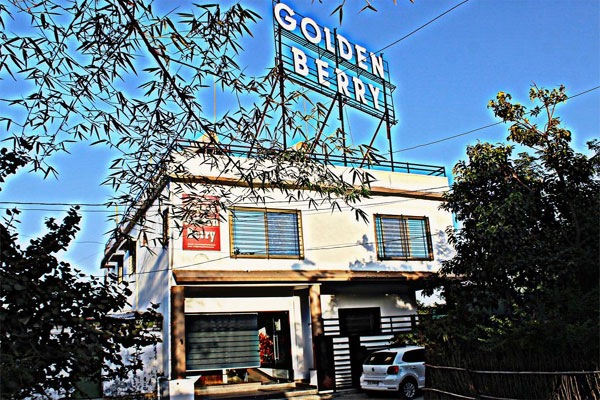 Large Photograph of Hotel Golden Berry Mount Abu located in Mount Abu