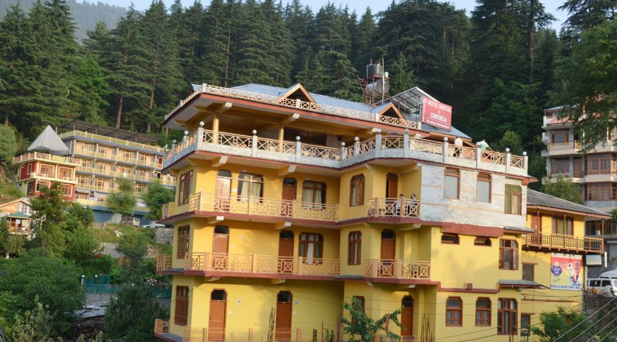 Large Photograph of HOTEL SHEETAL located in Naggar