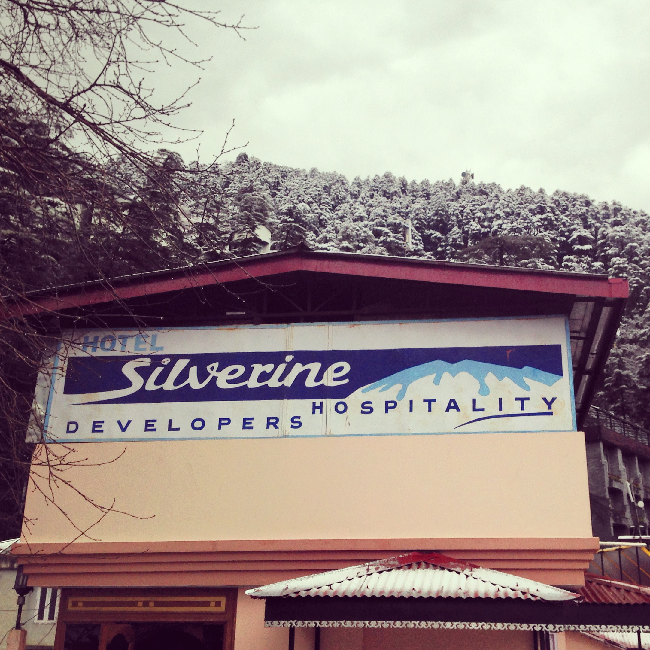Large Photograph of HOTEL SILVERINE located in Shimla