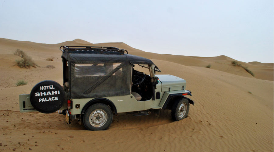 Half Day Sunset Jeep & Camel Ride,                                     SHAHI PALACE HOTEL JAISALMER - Budget Hotels in Jaisalmer