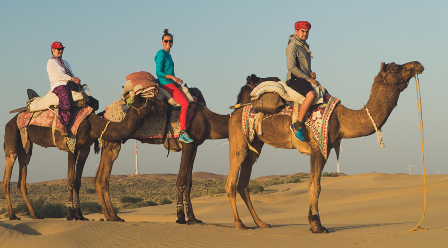 Half Day Sunset Camel & Cultural Adventure,                                     SHAHI PALACE HOTEL JAISALMER - Budget Hotels in Jaisalmer