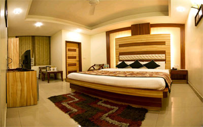Deluxe AC Room, HOTEL ASTER INN - Budget Hotels in New Delhi