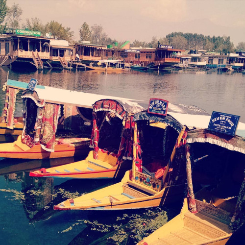 Standard 2 Night /3 Days Package (2 Person), WANGNOO HOUSEBOATS SRINAGAR - Budget Hotels in Srinagar